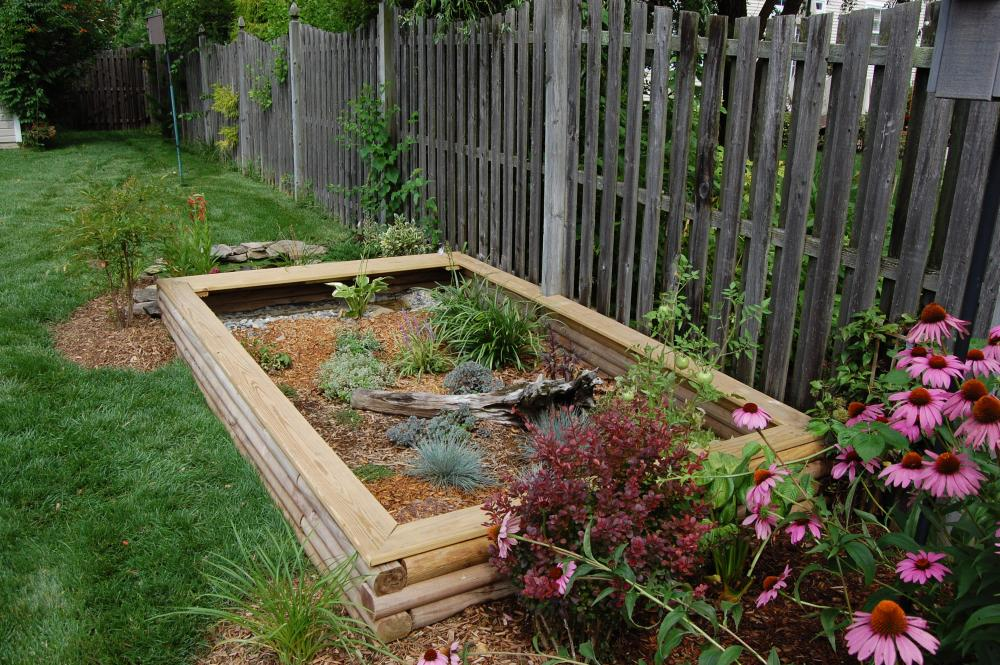 The gallery for outdoor box turtle habitat for Habitat container